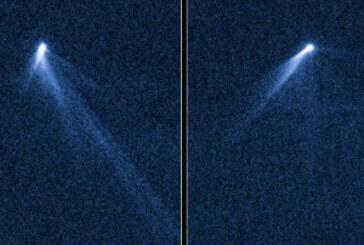 Descubren un extraño objeto en un cinturón de asteroides