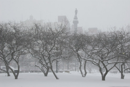 Winter Weather Advisory Issued to Cleveland Seniors and Public Health Tips for Extreme Cold