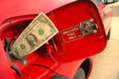 Los consumidores siguen prefiriendo los modelos con mejor economía de combustible